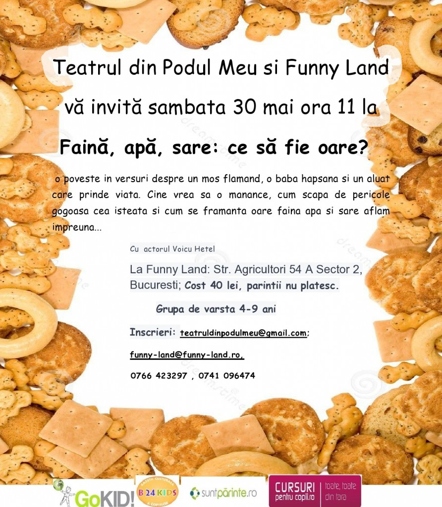 gogosica fermecata-page0001